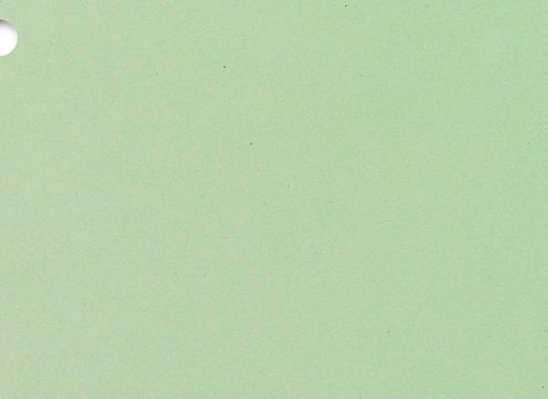 Trennstreifen 100x grün